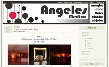 Web de Angeles Medina